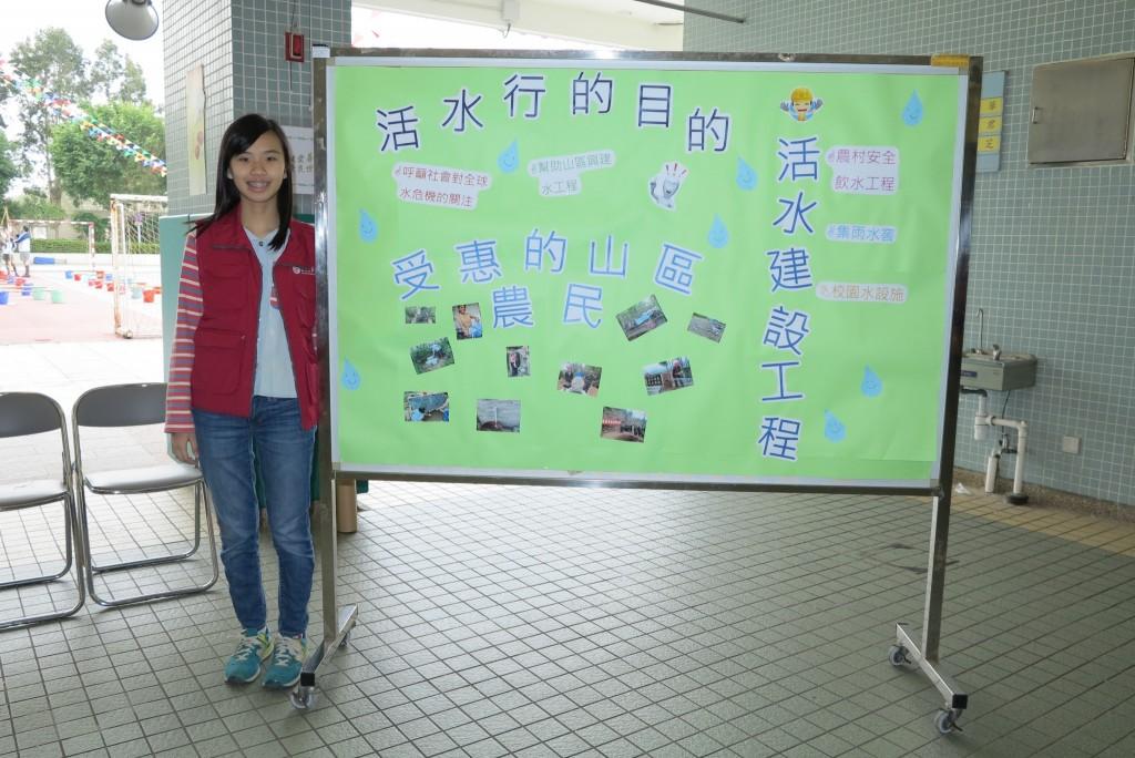 Exhibition boards (3)